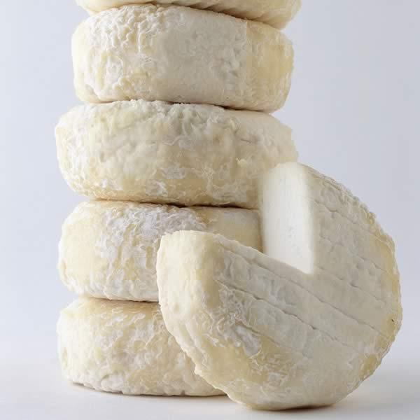 Picodon-AOP-Fromage de chèvre de caractère-Drôme Ardèche-picodon-jeune