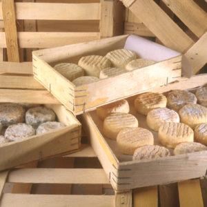 Cagettes de fromages de chèvres-ardèche drôme-Picodon AOP