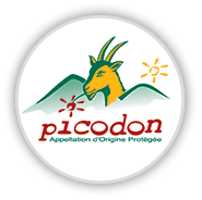 logo-picodon