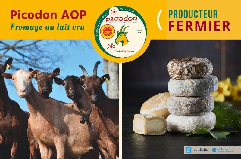 Fermier - Appellation d'Origine Protégée - Picodon - AOP - Drôme - Ardèche - France - Fromage - chèvre