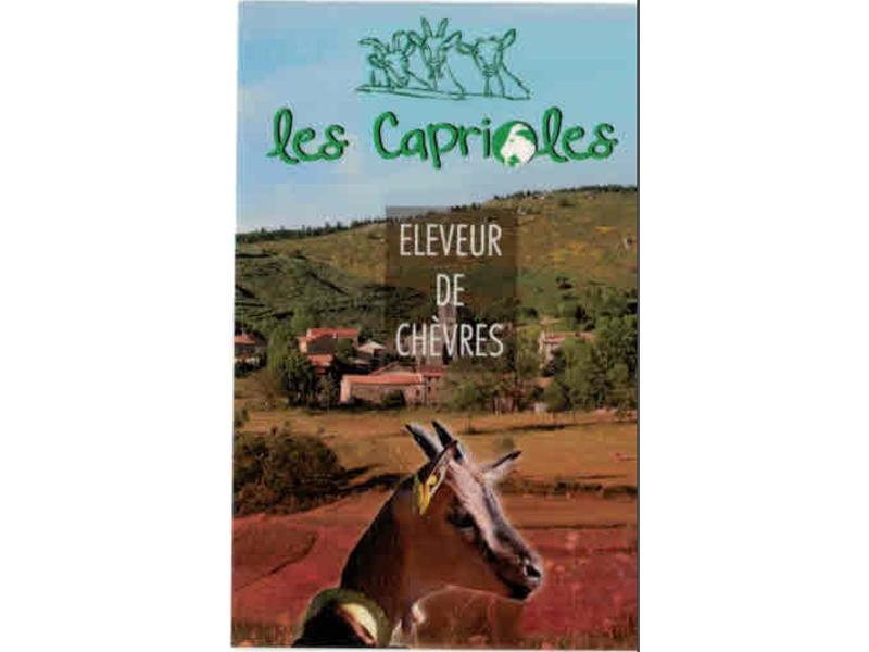 Appellation d'Origine Protégée - Picodon - AOP - caprioles- Ardèche - France - Fromage - chèvre